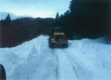 雪氷災害対応